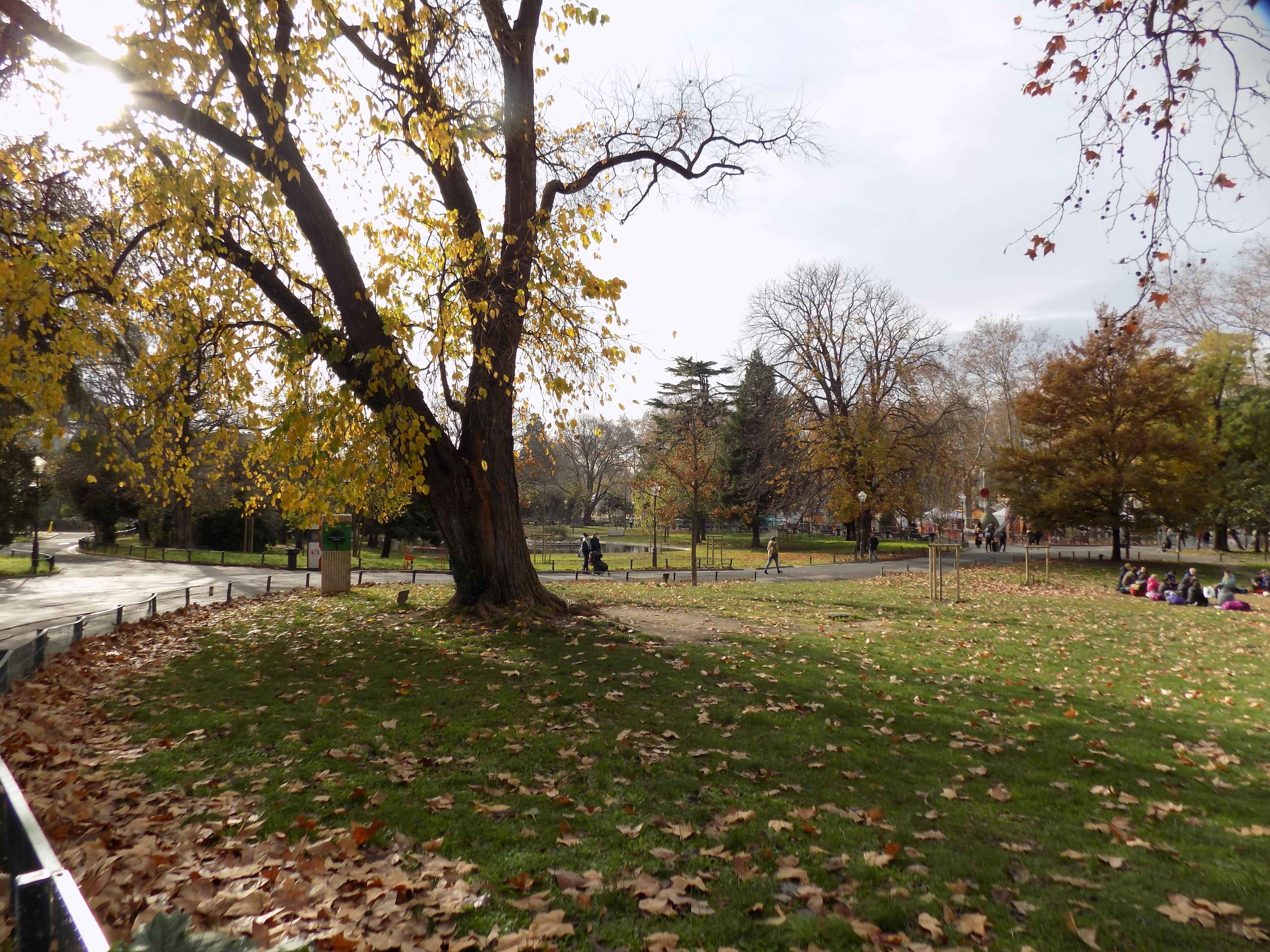12 parc